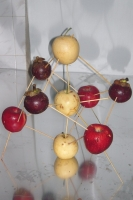 14_fruitconstellation4.jpg